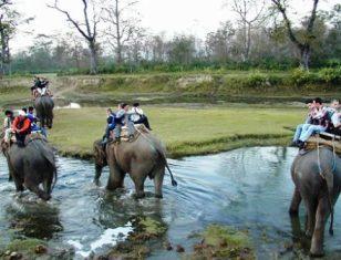 Chitwan National Park Tour Price